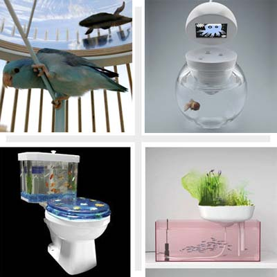 composite of four pet palaces: aquariums pictures
