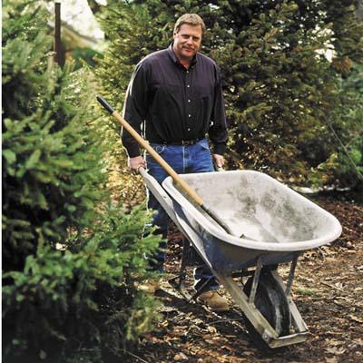 man carrying wheelbarrow in the lawn