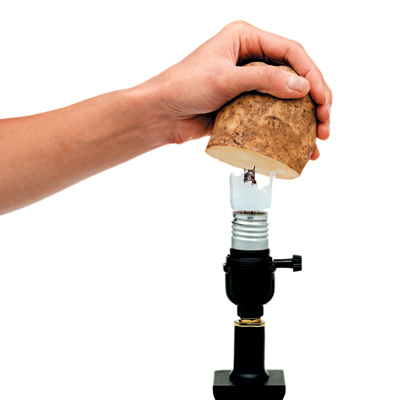 man removing broken lightbulb base with potato