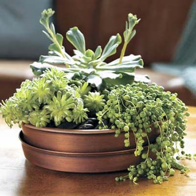 affordable, easy, do-it-yourself upgrades: patio table centerpiece