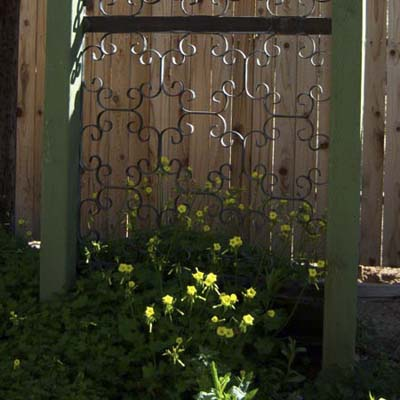 flowers with ornate metal door guard backdrop