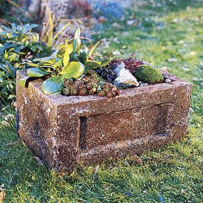 hypertufa trough filled with plants