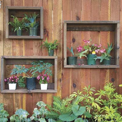 wooden wall with small plants mounted in shadow boxes, this old house pinterest profile top pins of 2013