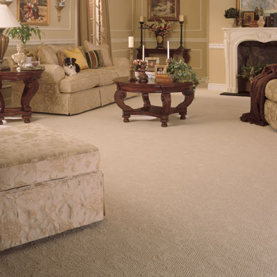 Polypropylene Wall To Wall Carpet Buying Guide This