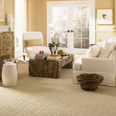 room with triexta wall to wall carpet