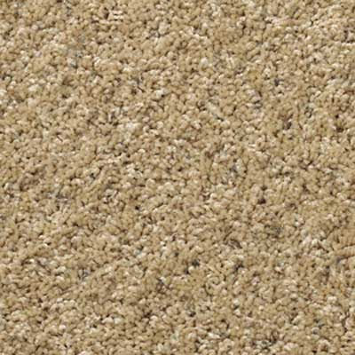 cut pile wall to wall carpeting