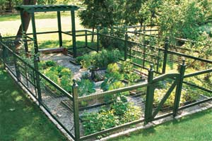 large plotted vegetable garden