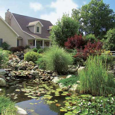 full view of beautiful monster pond built behind reader's house