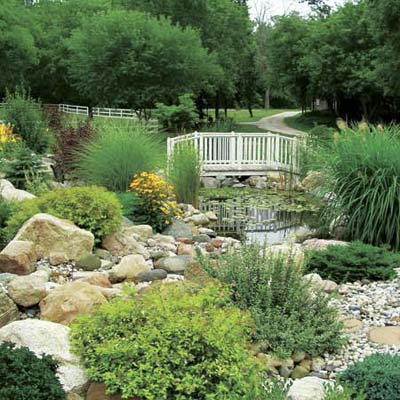 view of bridge water and plants in reader's finished pond garden