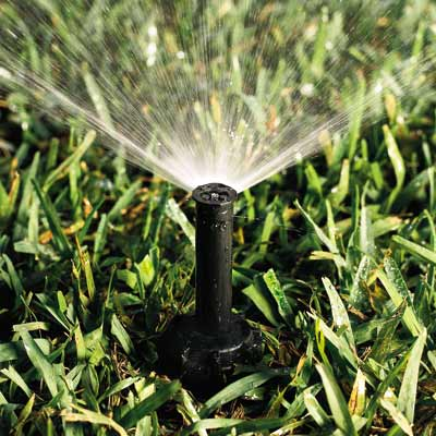 sprinkler watering grass