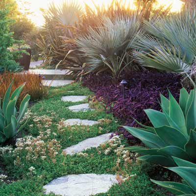 stone stepping stones in garden