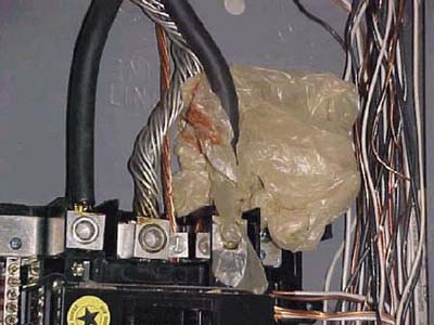 home inspection photo of plastic bag wrapped around service-entrance cables of electrical panel