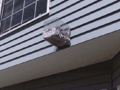 home inspection photo of screened dryer vent filled with lint