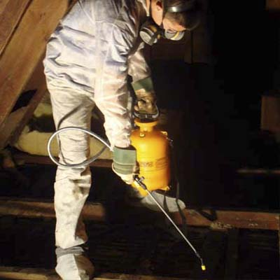 an organic stain cleaner and odor remover helps prepare the cleaned attic for installation of new insulation