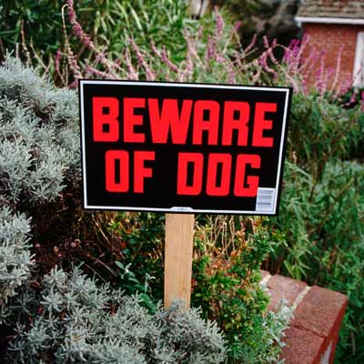 house with beware of dog sign