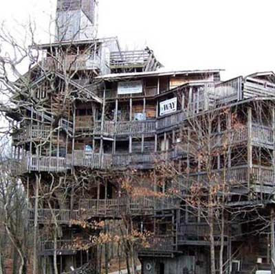 supersized tree house