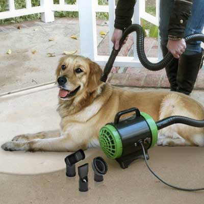 Professional pet grooming tool with dryer