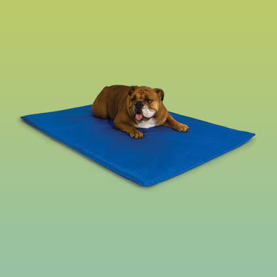 Blue pet bed with cooling function