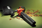 Leaf blower and fall leaves