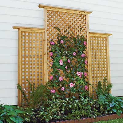 lattice trellis backyard project