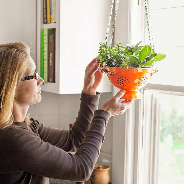 woman hang kitchen herb planters in front of window with window sash chain