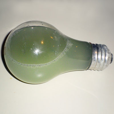 a water-filled light bulb