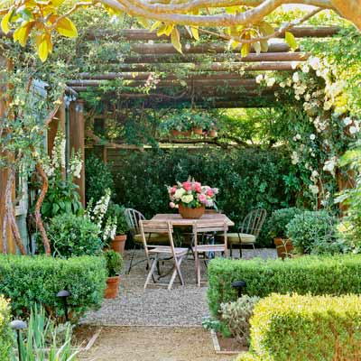 cottage garden with pergola of wood poles that supports climbing roses, wisteria over pea-gravel patio edged with boxwood