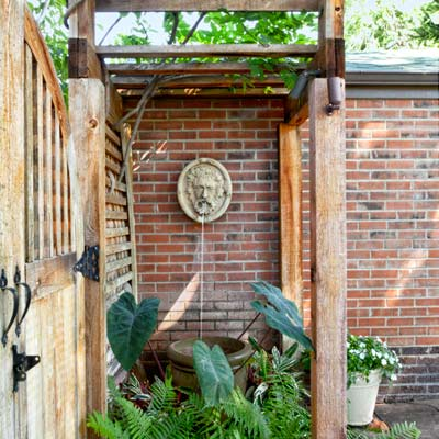 wall fountain with gates, colocasia, ferns