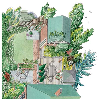 landscaping illustration plan back yard