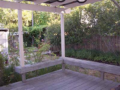 Austin House Project - back yard