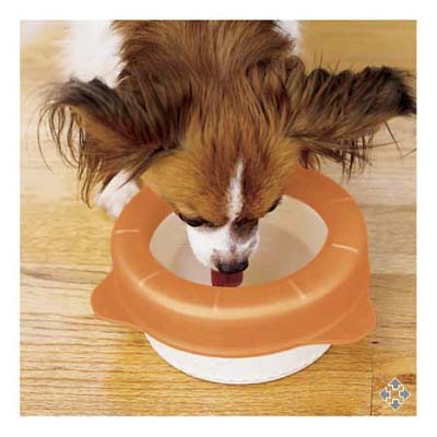 Splash-resistant dog bowl