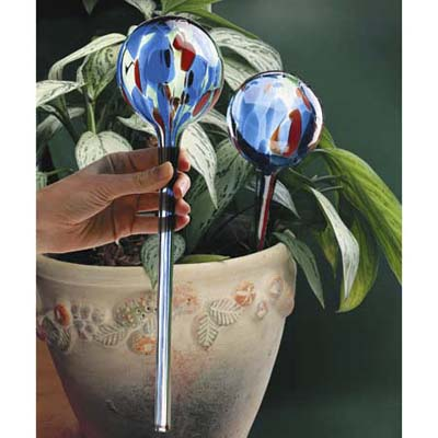 Glass watering bulb from Lee Valley