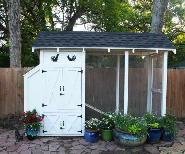 build a better chicken coop, elevated nested spot with ramp to chicken run