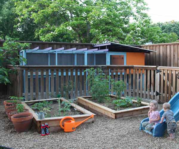build a better chicken coop