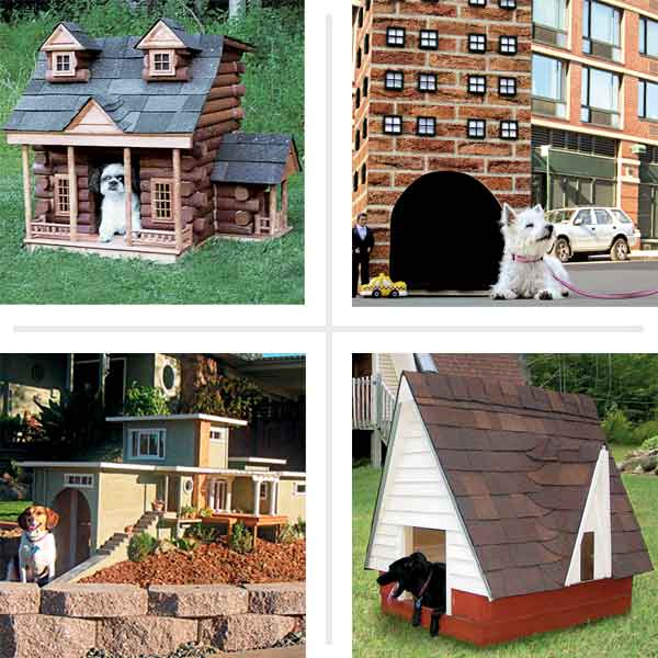 doghouses made to look like people houses