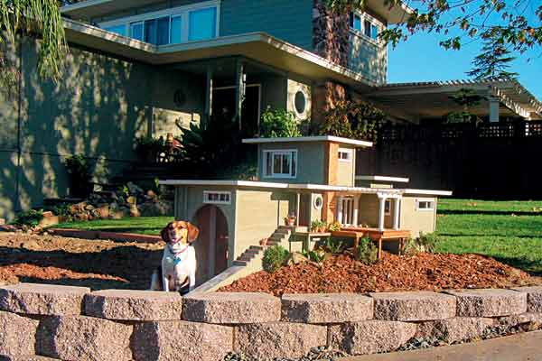 dog with flat roof contemporary style doghouse
