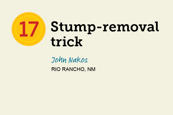 Stump-Removal Trick for 27 Reader Tips That Save Time and Money