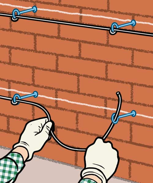 illustration of person attaching supports to masonry wall for growing espaliered plant