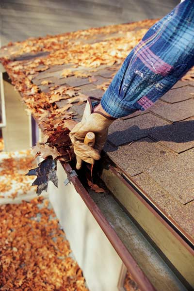 cleaning leaves out of gutters, new years diy resolutions