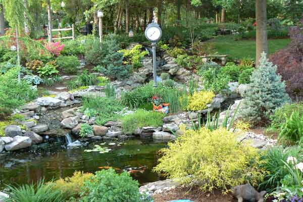 Winner Make A Splash After Best Yard Before And Afters
