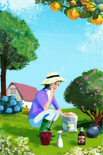 woman gardening, right nutrients for a healthy garden