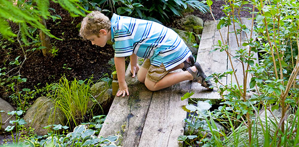 a boy looks at a stream on a zig-zag bridge in a backyard garden retreat