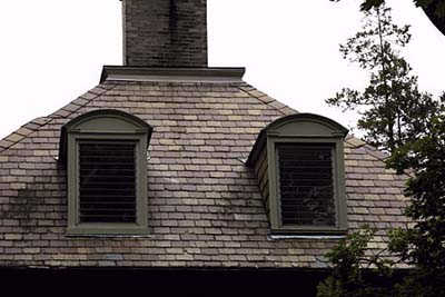 Arched top dormers