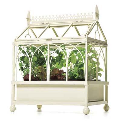 an miniature terrarium for indoors