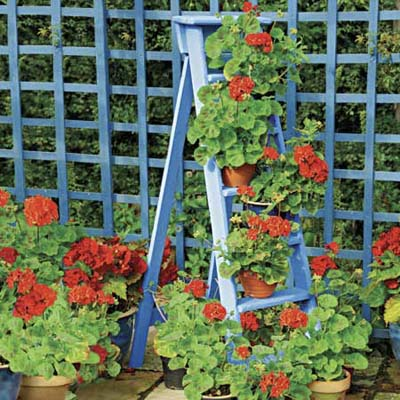 an old ladder reused as a plant stand