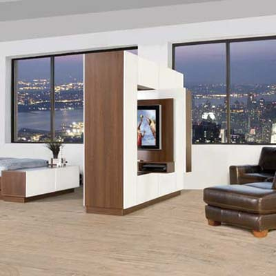 wall divider with swiveling television with a bookcase on the reverse side