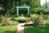 a garden in Newburyport, MA with a pergola and period design