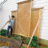 install the trellis