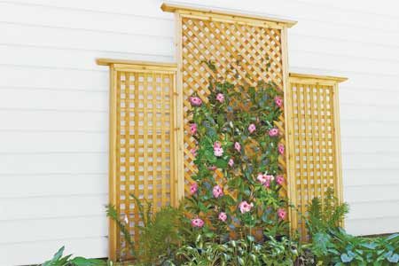 DIY Lattice Trellis