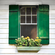 vintage window box with planted flowers